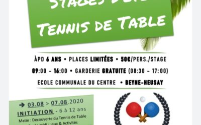 Stage d'été Tennis de table