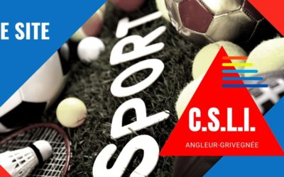Les CSLI, le site